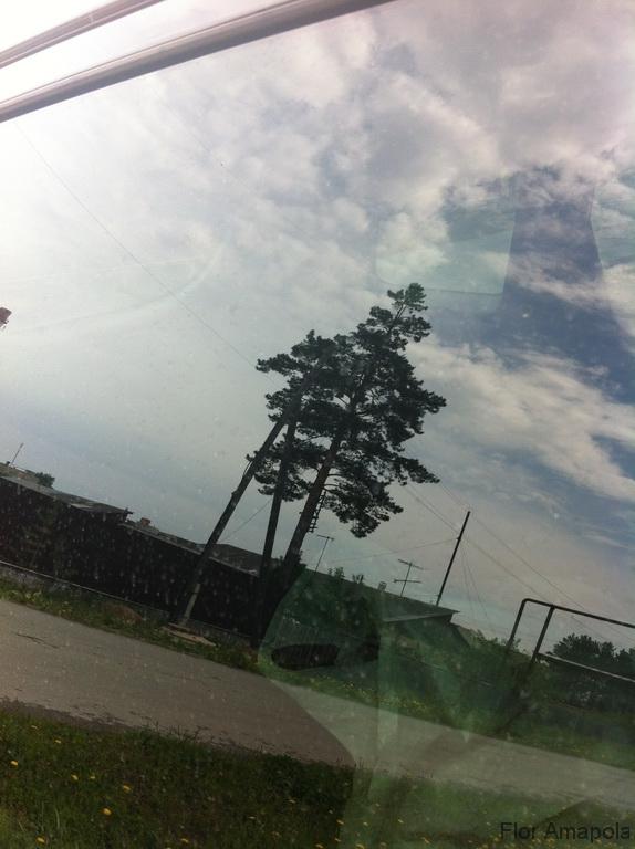 may_2012_11
