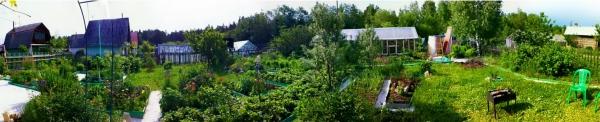 panoramy_iz_zhizni_07